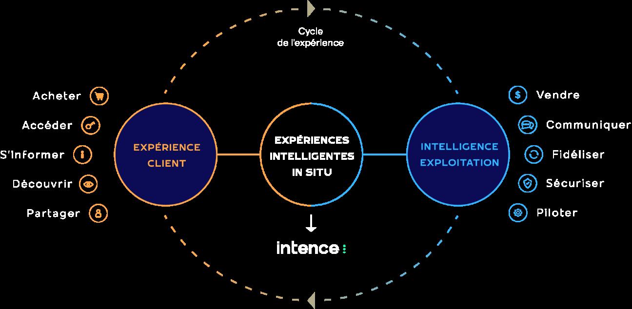 Cycle de l'expérience Intence